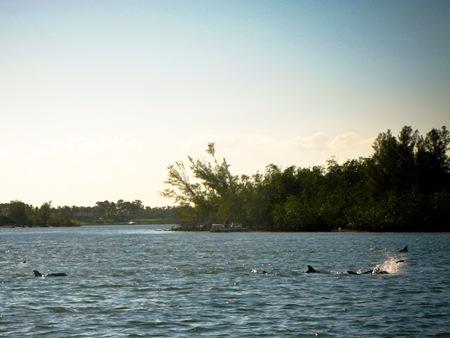 _web-2008-12-Florida-21