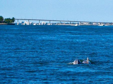 _web-2008-12-Florida-23