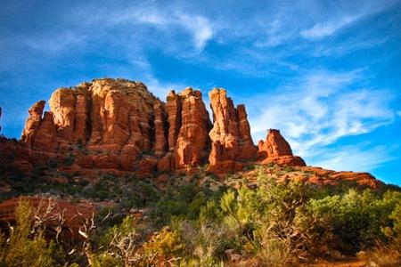 _web-2009-Arizona-24