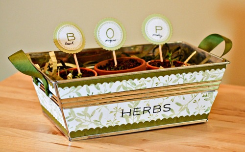 _web-2009-04-13-herb-box-3