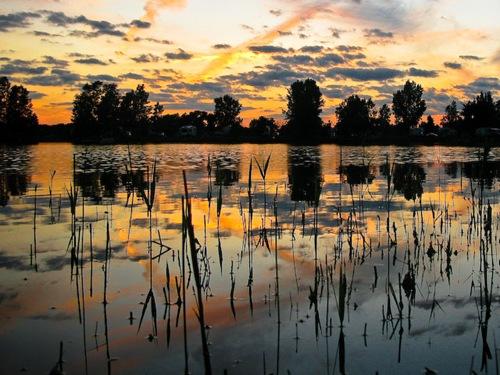 Haas Lake Campground - New Hudson Michigan, Sunset reeds lake
