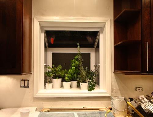 herbs in garden window in kitchen