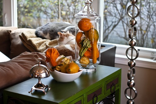 Decorative pumpkins gourds