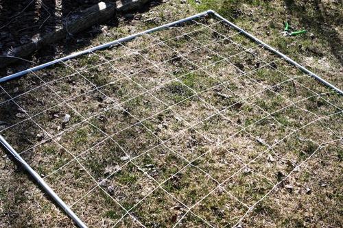 _web-2010-04-gardening-10