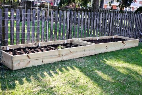 _web-2010-04-gardening-13