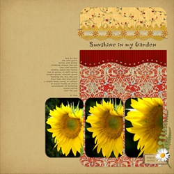 Carolyn-sunflowers