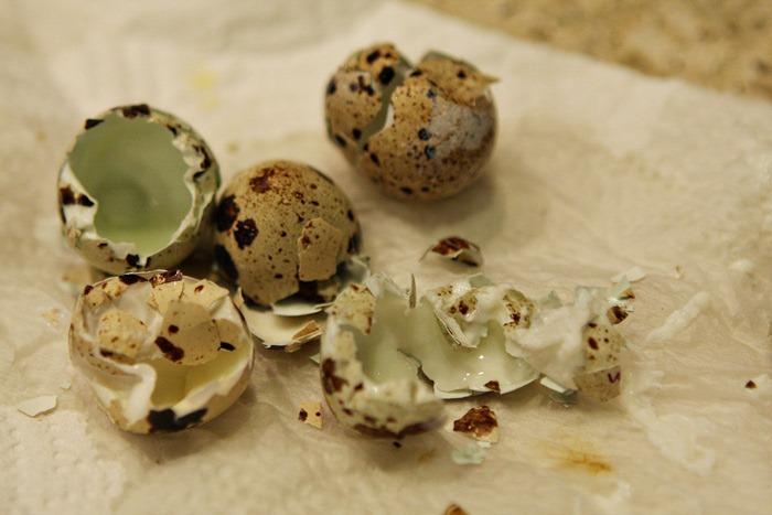 Sous-Vide-Quail-Eggs-015