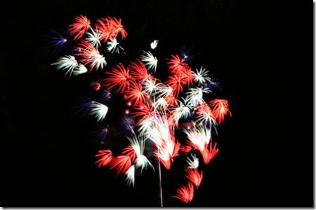 _web-2007-07-03 Chicago Fireworks 095-2
