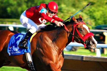 2007-08-31 Arlington Park Race Track Horses - By Jen Caputo