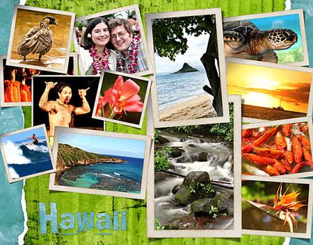 Hawaiicollage_2