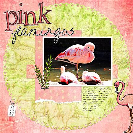 Pinkflamingos